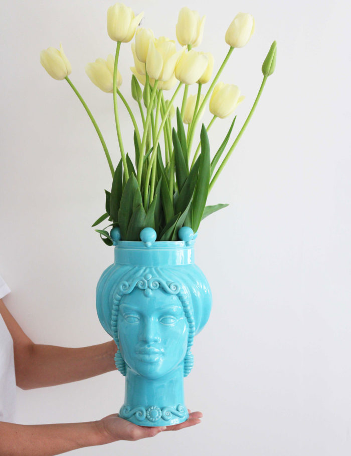 Light blue moor's heads